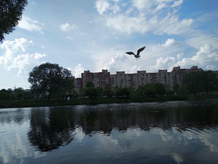Один летний день учителя, Санкт-Петербург, фото 22