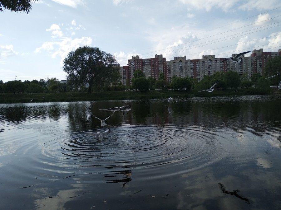 Один летний день учителя, Санкт-Петербург, фото 23