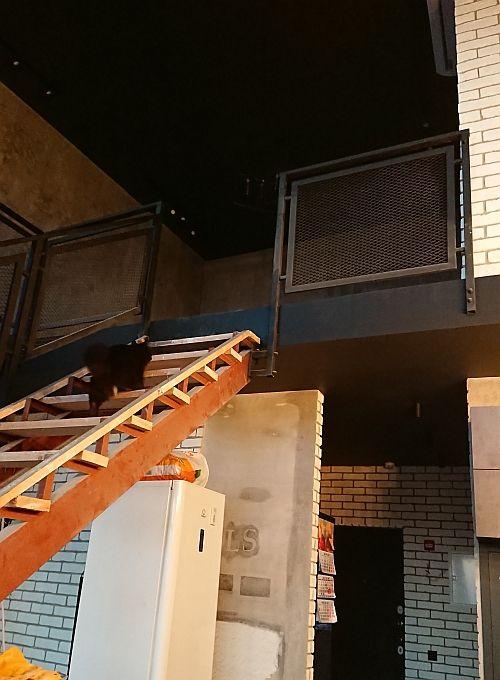 Мой день в фотографиях, в котором я переехала в новую квартиру, подмосковный Королев, фото 57