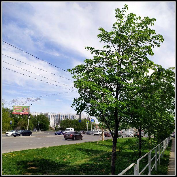 Мой будний день, в котором я захотела на работу после самоизоляции, Челябинск, фото 31