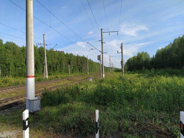 Один мой день в пути, из Санкт-Петербурга в Карелию, фото 41