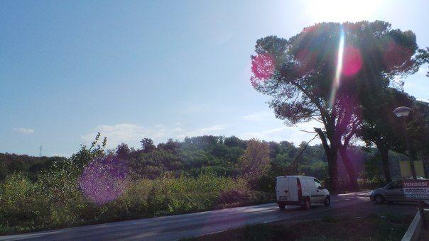 Один мой рабочий день в городе Пиза, Италия, фото 25