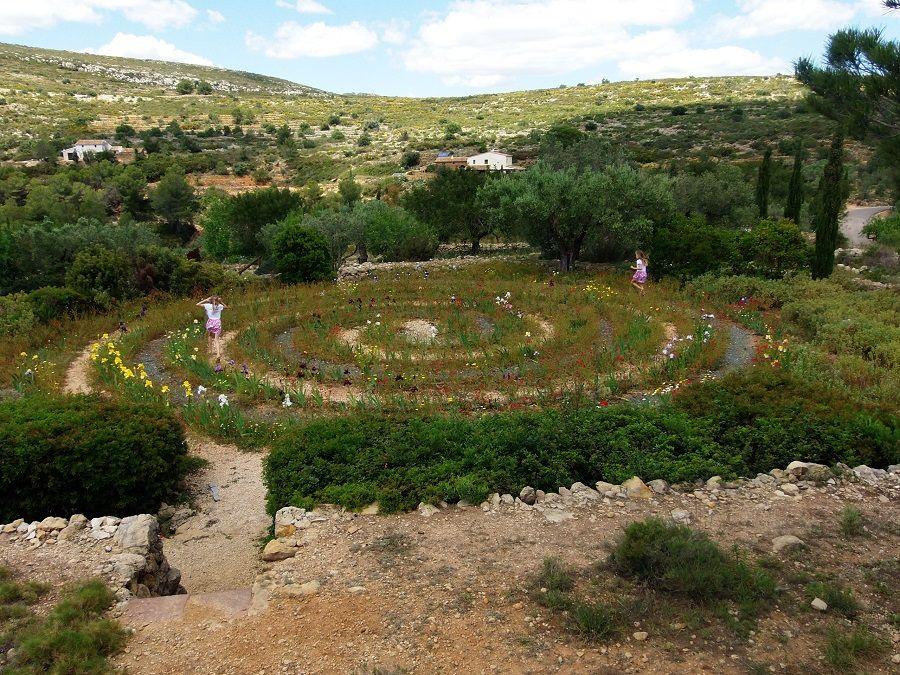 Один мой летний день в цветочном саду, вся семья в сборе, Испания, фото 21