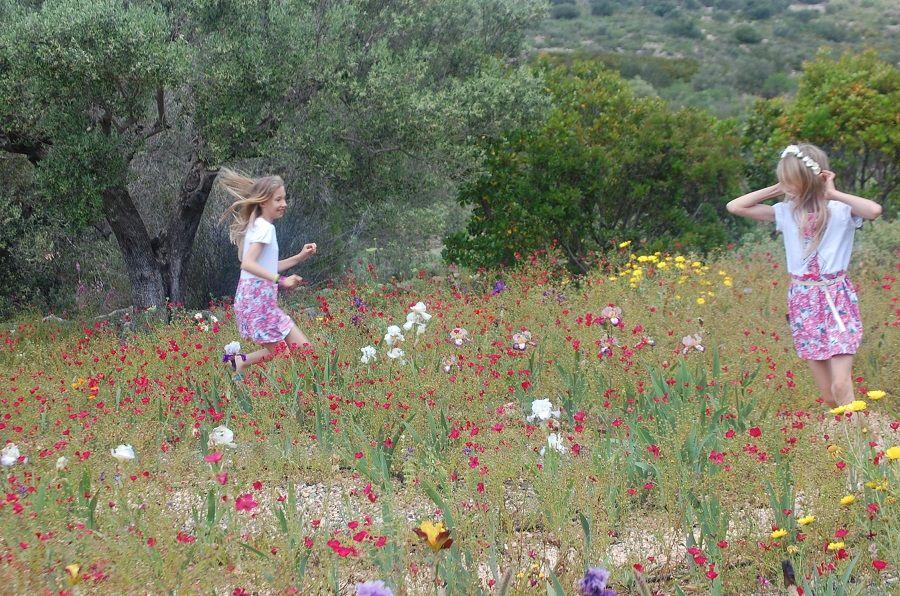 Один мой летний день в цветочном саду, вся семья в сборе, Испания, фото 23