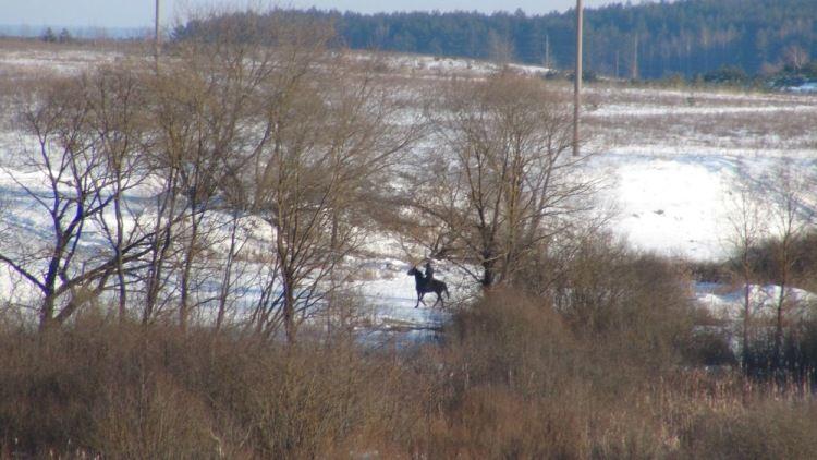 Один будний день сельского жителя, Калужская область, фото 31