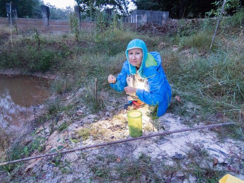 Один день русского волонтера в тайской глуши, фото 7