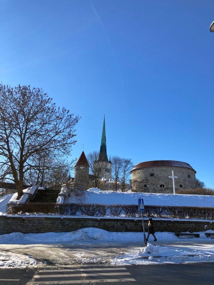 Один наш выходной день в отеле Таллина, в честь 14-го февраля, фото 32