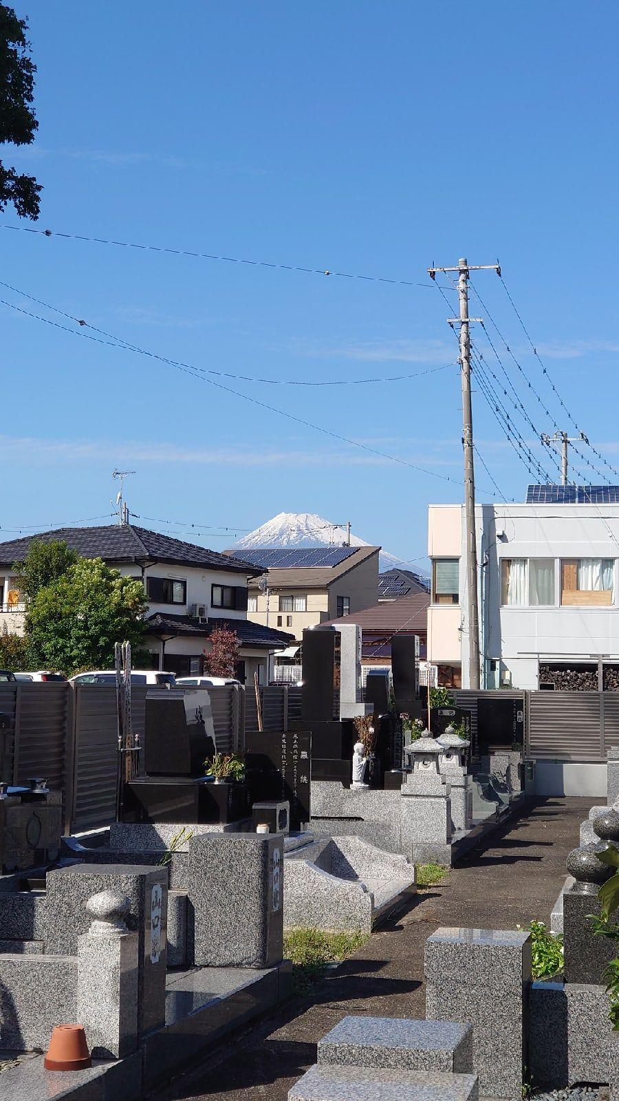 Один мой день в префектуре Сидзока, Япония, я покажу вам долгожданную семейную поездку, фото 14