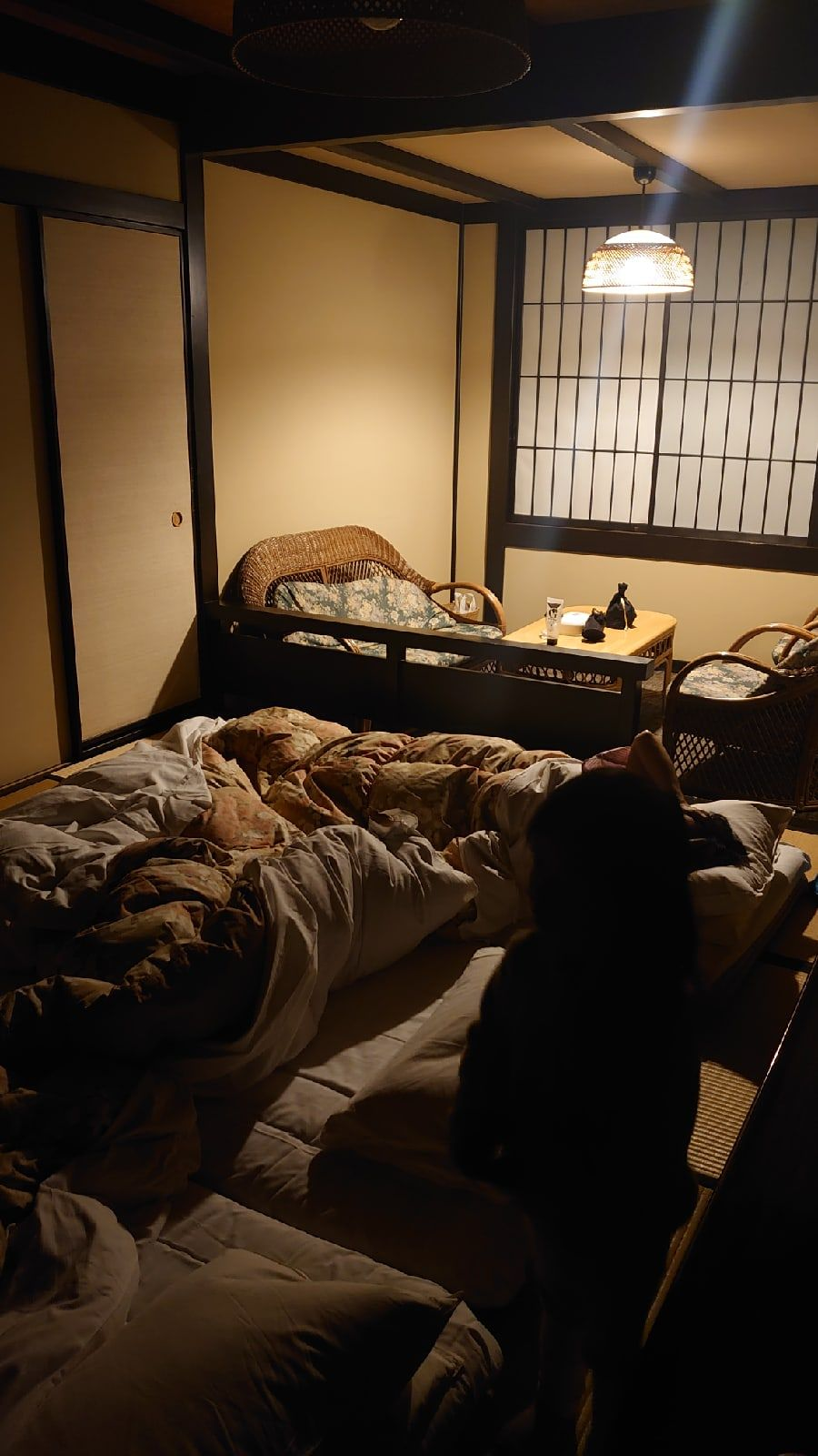 Один мой день в префектуре Сидзока, Япония, я покажу вам долгожданную семейную поездку, фото 33