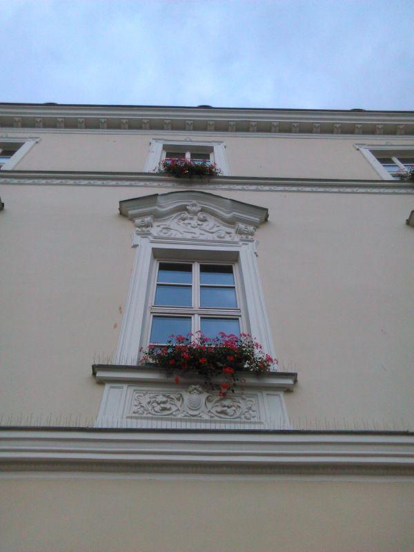 Один будний день фрилансера и преподавателя русского языка в Брно, Чехия, фото 60