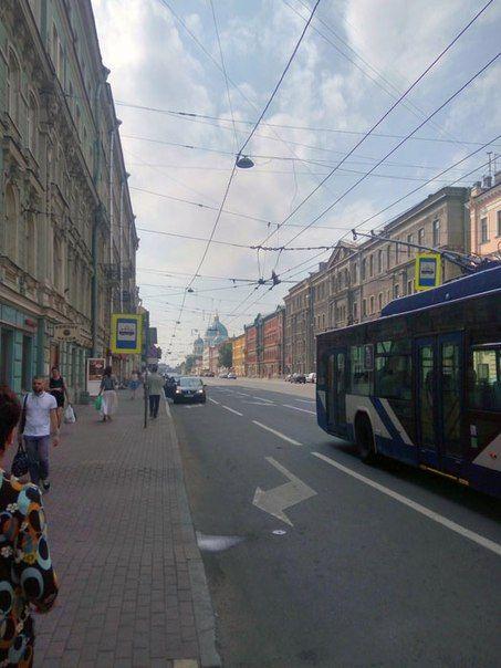 Один мой летний день в Санкт-Петербурге и его окрестностях, фото 30