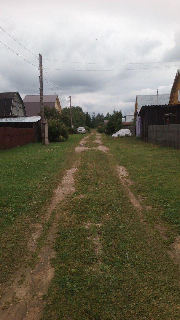 Как я провела свой летний выходной день в деревне в Вологодской области, фото 13