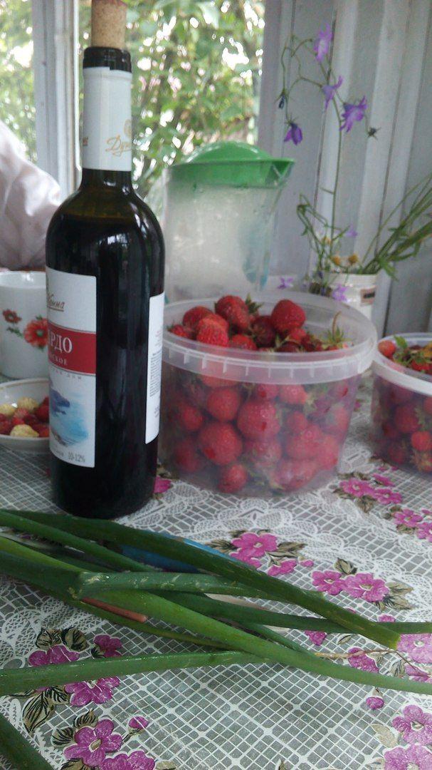 Как я провела свой летний выходной день в деревне в Вологодской области, фото 29