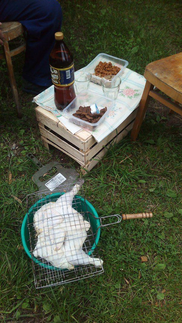 Как я провела свой летний выходной день в деревне в Вологодской области, фото 35
