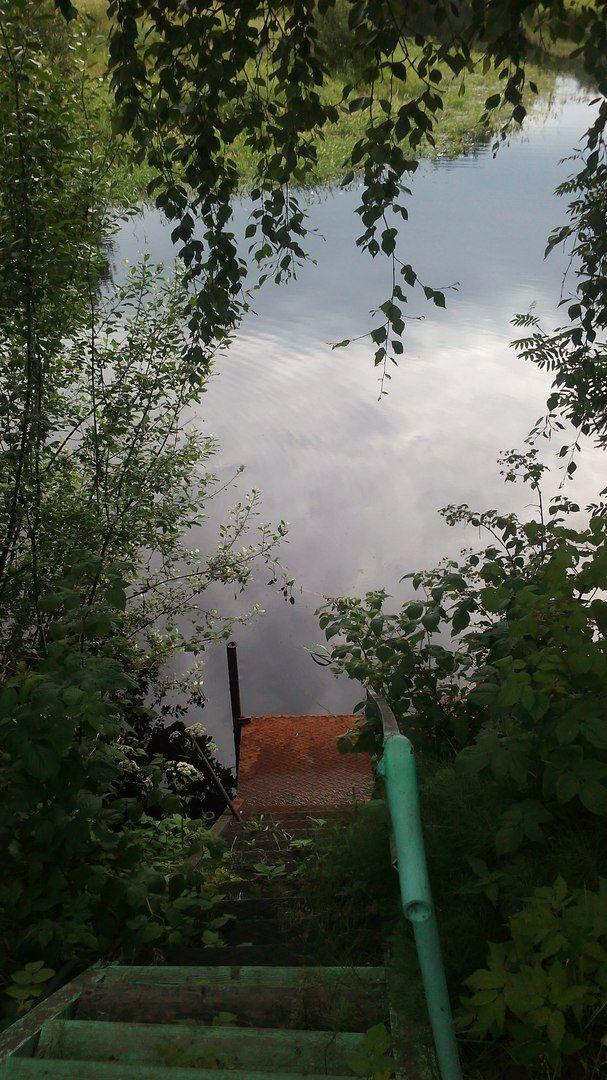 Как я провела свой летний выходной день в деревне в Вологодской области, фото 6