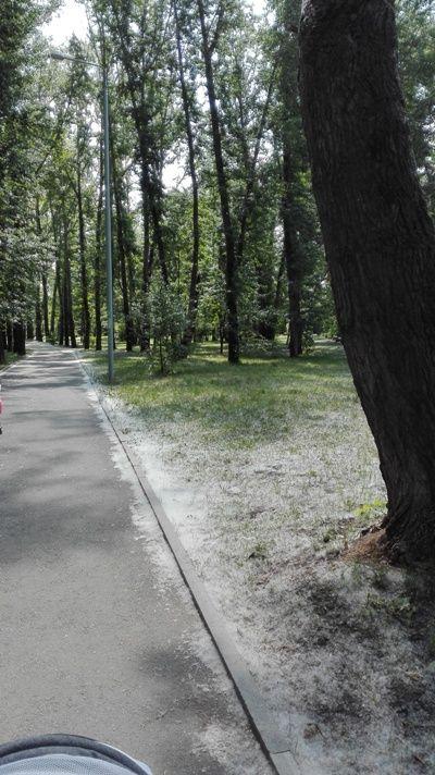 Мой рядовой день в отпуске по уходу за ребёнком, я покажу вам Екатеринбург, фото 26