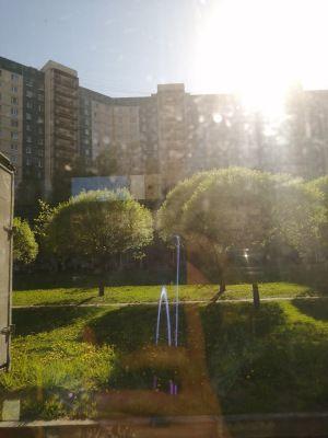 Один мой карантинный день, в посте центр Санкт-Петербурга, дом, работа, фоточки котика, фото 31