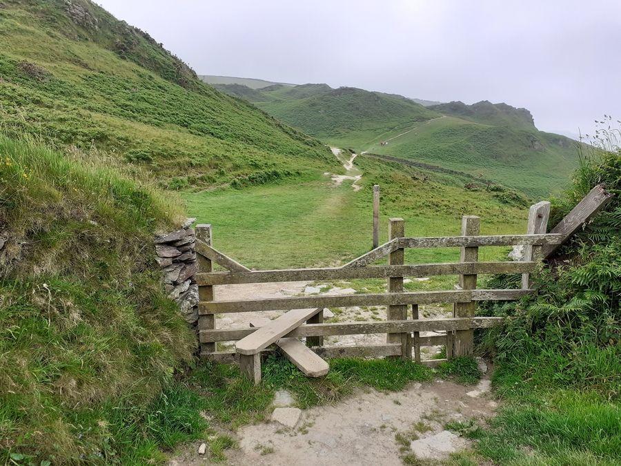 Один летний день проведенный в национальном парке на юго-западе Англии, фото 31