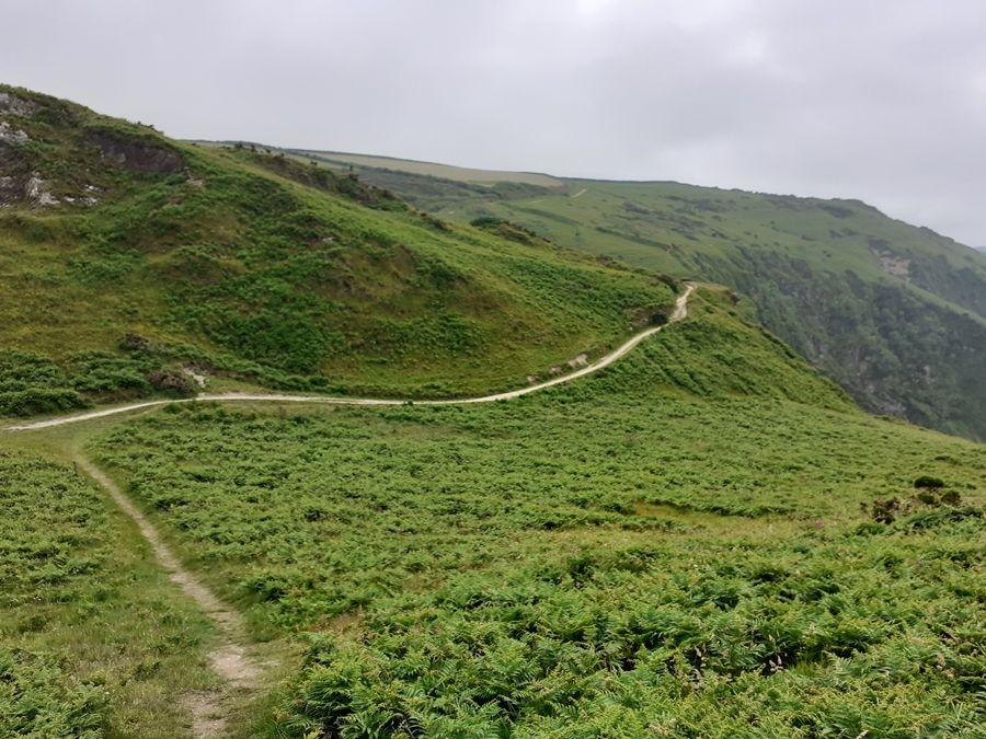 Один летний день проведенный в национальном парке на юго-западе Англии, фото 33