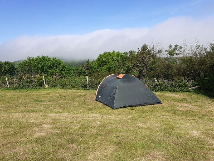 Один летний день проведенный в национальном парке на юго-западе Англии, фото 4