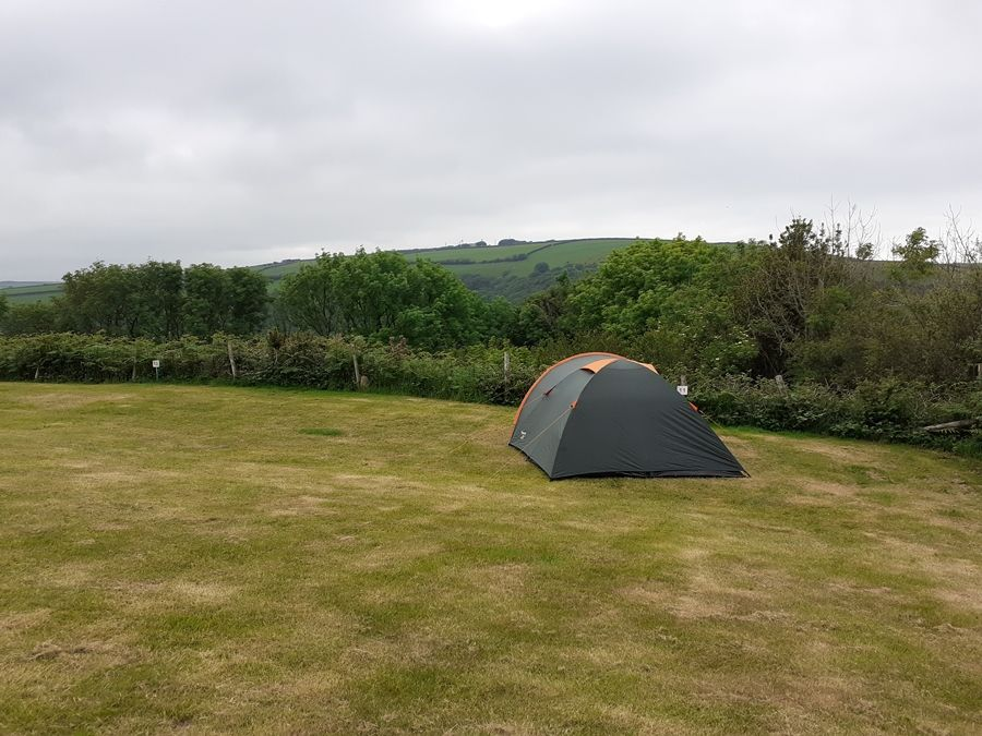 Один летний день проведенный в национальном парке на юго-западе Англии, фото 43