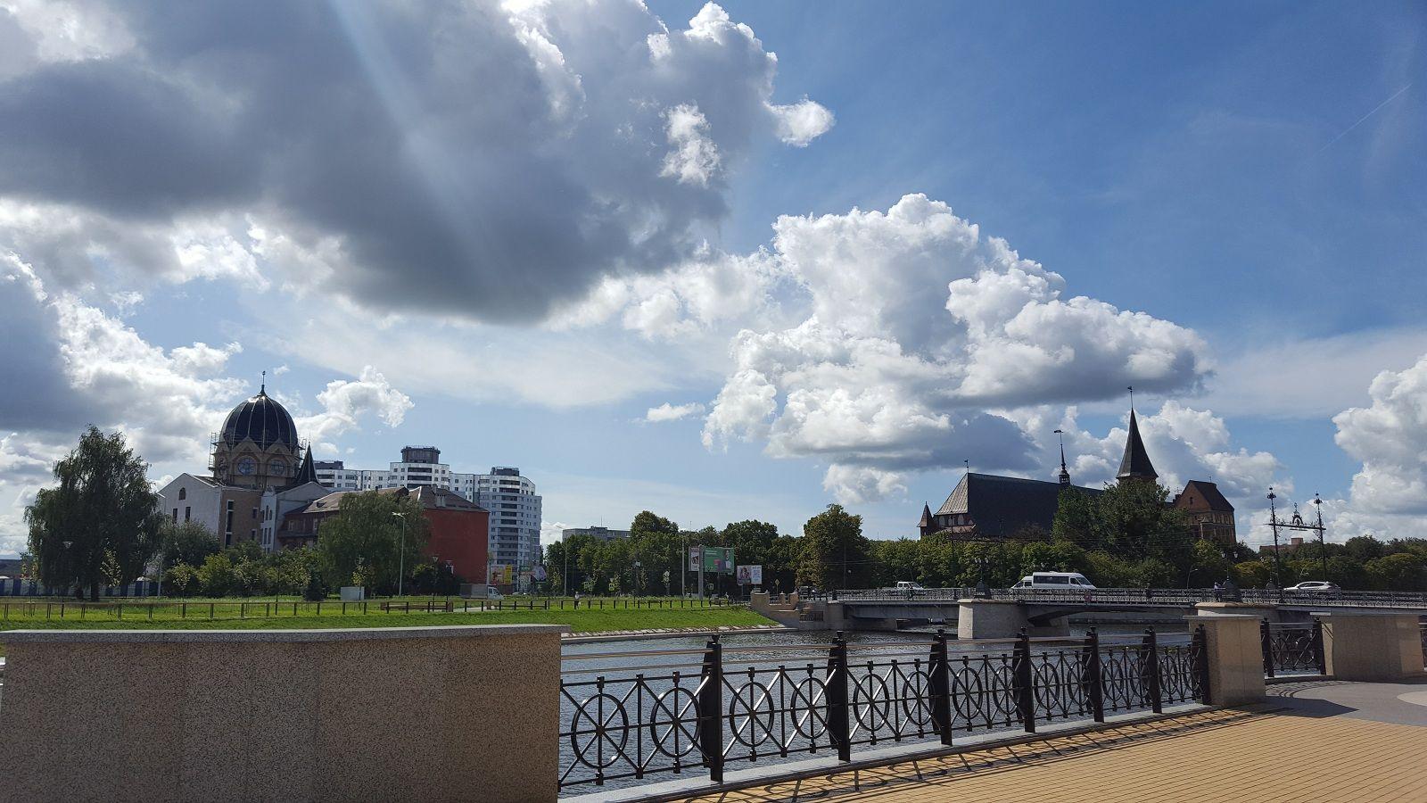 Как я провела свой день рождение, я покажу вам летний Калининград, фото 54