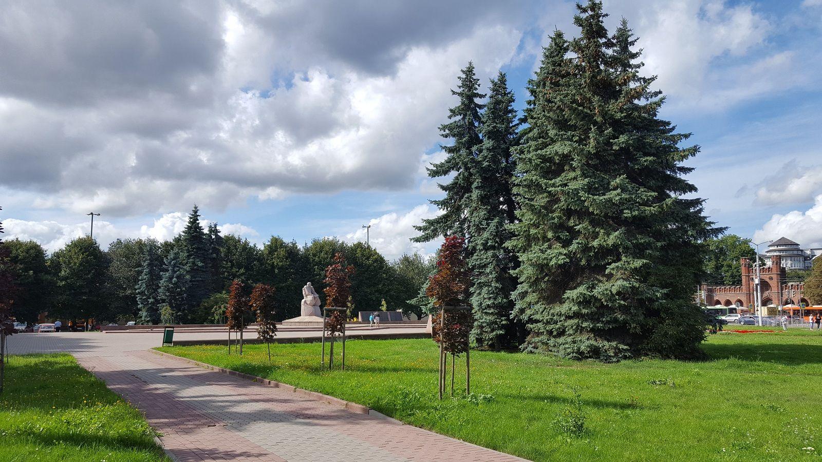 Как я провела свой день рождение, я покажу вам летний Калининград, фото 61