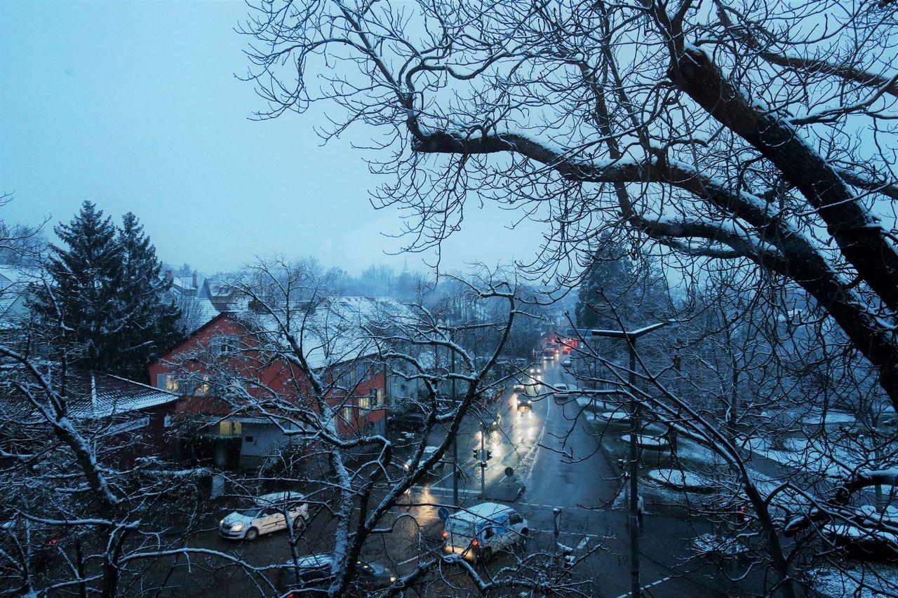 Вспомним зиму. Один мой день в Марбах-на-Неккаре, Германия, фото 7
