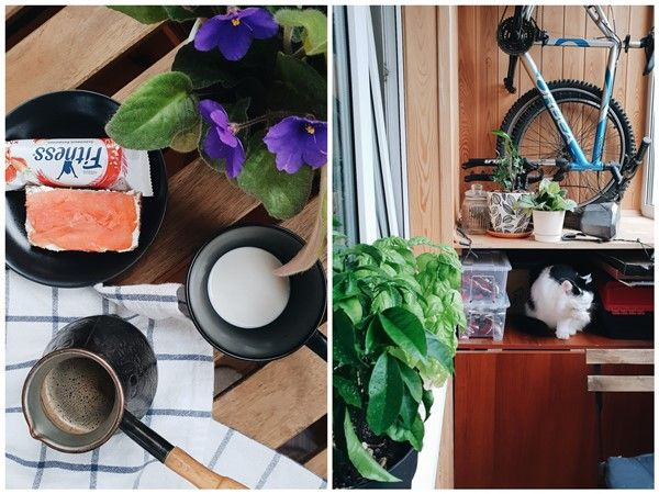 Один рабочий день москвички, я покажу вам свою работу, дом, котика, фото 5