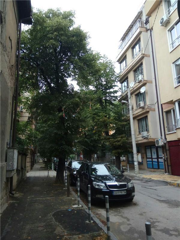 Один мой день в Софии, Болгария. Стажировка по обмену в родильном доме Майчин дом, фото 7