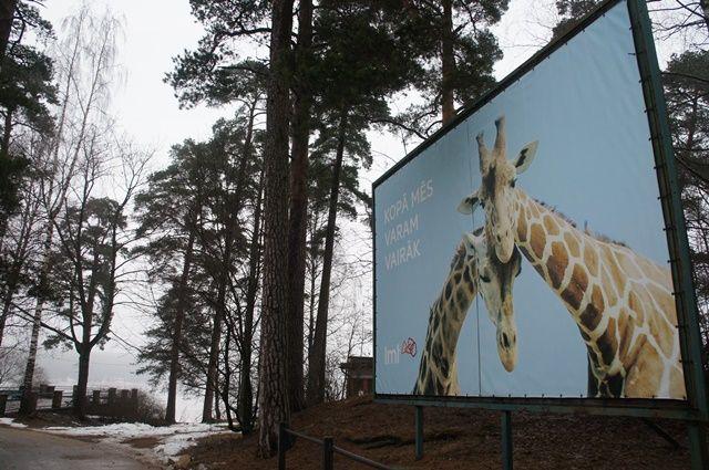 Один мой день в Латвии, я покажу вам зимнею Ригу