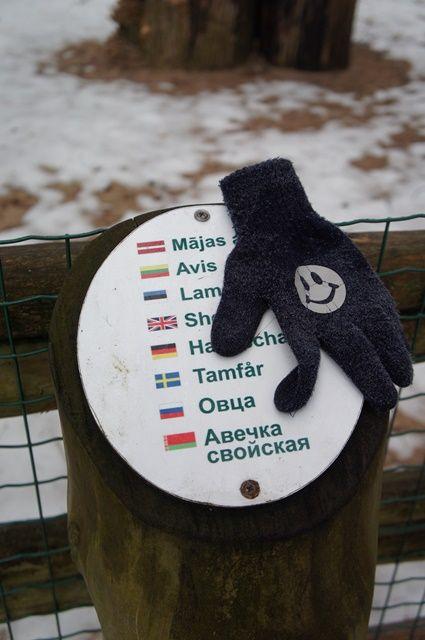 Один мой день в Латвии, я покажу вам зимнею Ригу, фото 27