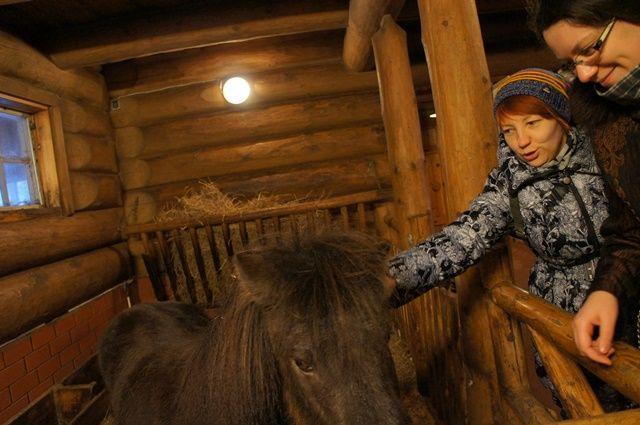 Один мой день в Латвии, я покажу вам зимнею Ригу, фото 29
